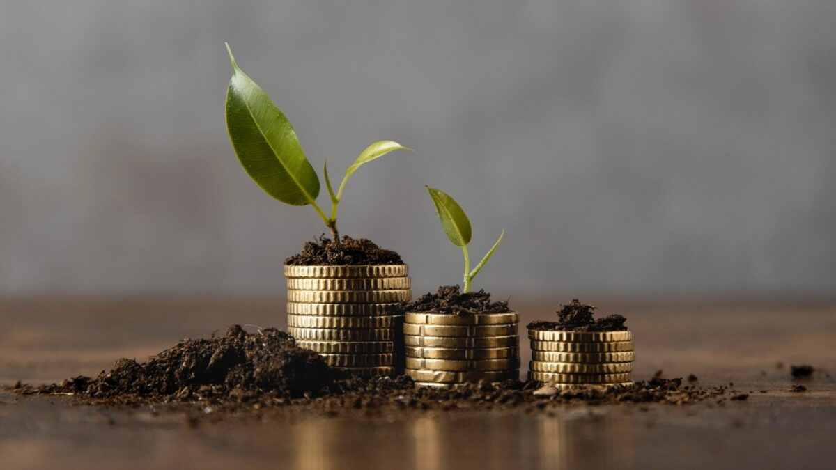Zöld hitel (Fotó: Freepik)